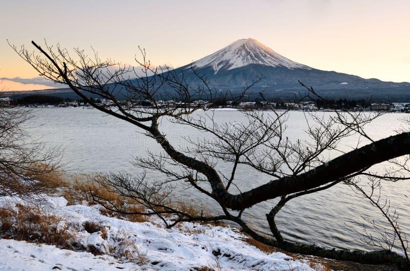 Τοποθετήστε το Φούτζι στη χειμερινή σκηνή το Φεβρουάριο με το ηλιοβασίλεμα στοκ εικόνα με δικαίωμα ελεύθερης χρήσης