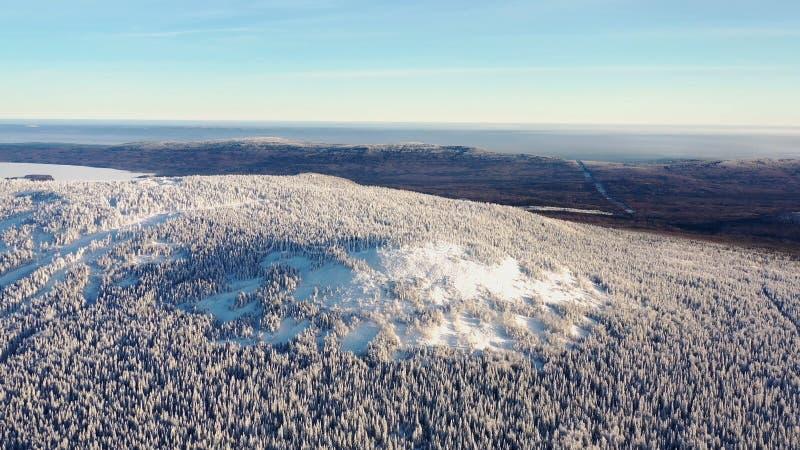Τοπ άποψη της κορυφής υψώματος που καλύπτεται με το χιόνι footage Χειμερινό τοπίο της περιοχής βουνών το πυκνό κωνοφόρο δάσος που στοκ φωτογραφίες