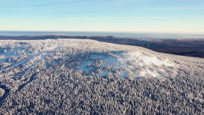 Τοπ άποψη της κορυφής υψώματος που καλύπτεται με το χιόνι footage Χειμερινό τοπίο της περιοχής βουνών το πυκνό κωνοφόρο δάσος που στοκ φωτογραφία με δικαίωμα ελεύθερης χρήσης
