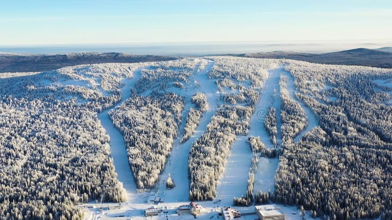 Τοπ άποψη των κλίσεων σκι με τους ανελκυστήρες footage Όμορφη άποψη της χιονισμένης βουνοπλαγιάς με το κωνοφόρα δάσος και το σκι στοκ εικόνα