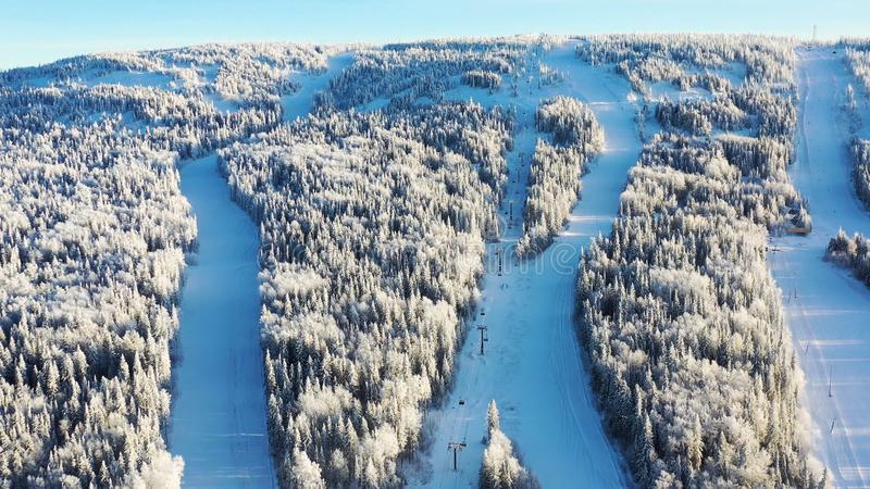 Τοπ άποψη των κλίσεων σκι με τους ανελκυστήρες footage Όμορφη άποψη της χιονισμένης βουνοπλαγιάς με το κωνοφόρα δάσος και το σκι στοκ εικόνες με δικαίωμα ελεύθερης χρήσης