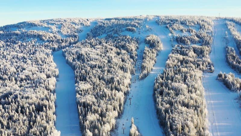 Τοπ άποψη των κλίσεων σκι με τους ανελκυστήρες footage Όμορφη άποψη της χιονισμένης βουνοπλαγιάς με το κωνοφόρα δάσος και το σκι στοκ εικόνες