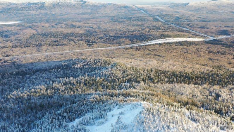 Τοπ άποψη των ορεινών περιοχών με το κωνοφόρο δάσος το χειμώνα footage Όμορφο πανόραμα χιονισμένου πυκνού κωνοφόρου στοκ φωτογραφία