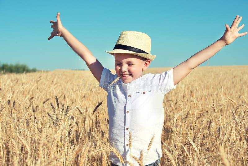 Το αγόρι περπατά στον τομέα σίτου στοκ φωτογραφίες με δικαίωμα ελεύθερης χρήσης