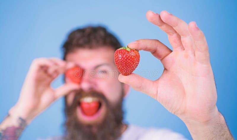 Το γενειοφόρο κλείσιμο του ματιού ατόμων με το κόκκινο μούρο, Μακριά γενειάδα hipster ατόμων η όμορφη τρώει τη φράουλα λαβής Εξετ στοκ φωτογραφίες
