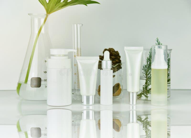 Το καλλυντικό και skincare εμφιαλώνει τα εμπορευματοκιβώτια με τα πράσινα βοτανικά φύλλα, κενή συσκευασία ετικετών για το μαρκάρι στοκ εικόνες με δικαίωμα ελεύθερης χρήσης