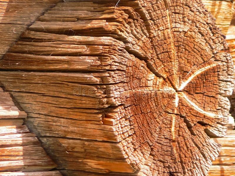 Το κούτσουρο του σπιτιού κούτσουρων αποτελείται από στοκ φωτογραφία με δικαίωμα ελεύθερης χρήσης