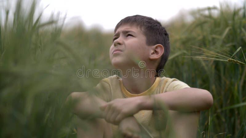 Το σοβαρό αγόρι με μια ματιά tence κάθεται στον τομέα εξετάζοντας τον ουρανό στοκ φωτογραφία με δικαίωμα ελεύθερης χρήσης