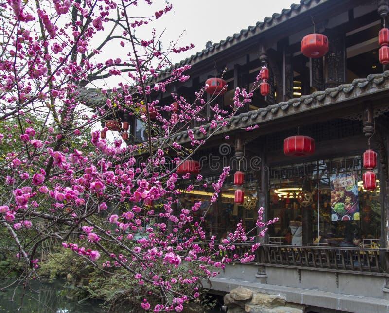 Το τοπίο στη λάρνακα hou wu, chengdu, Κίνα στοκ εικόνα με δικαίωμα ελεύθερης χρήσης