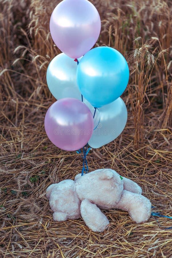 Το παιχνίδι των παιδιών teddy αντέχει, βρίσκεται το καλοκαίρι σε έναν τομέα σίτου, με τα πολύχρωμα μπαλόνια Η έννοια ενός κόμματο στοκ φωτογραφία με δικαίωμα ελεύθερης χρήσης