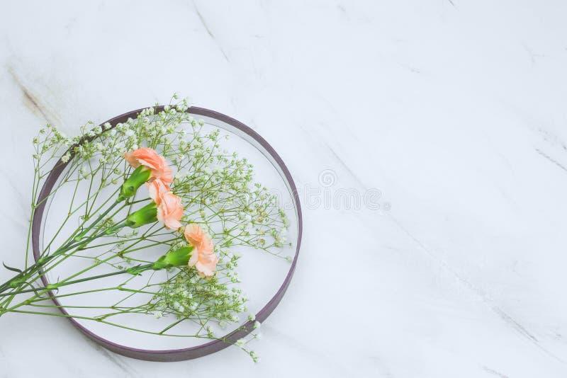 το πιάτο και το gypsophila και το γαρίφαλο ανθίζουν το πλαίσιο σε ένα μαρμάρινο διάστημα αντιγράφων υποβάθρου στοκ εικόνα