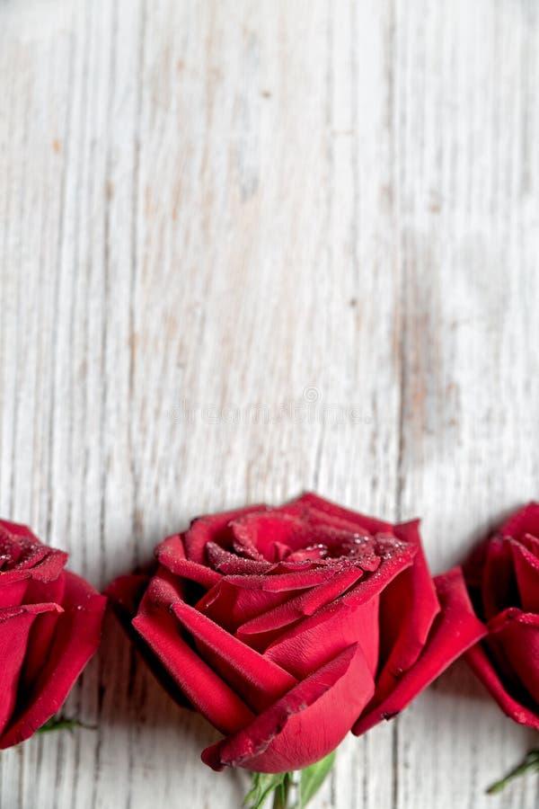 Τρία κόκκινα τριαντάφυλλα στο ελαφρύ ξύλινο υπόβαθρο με τη διαστημική, τοπ άποψη αντιγράφων, κάθετη σύνθεση - εικόνα στοκ εικόνα με δικαίωμα ελεύθερης χρήσης
