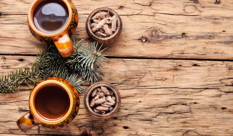 Τσάι με τους οφθαλμούς πεύκων στοκ φωτογραφίες με δικαίωμα ελεύθερης χρήσης