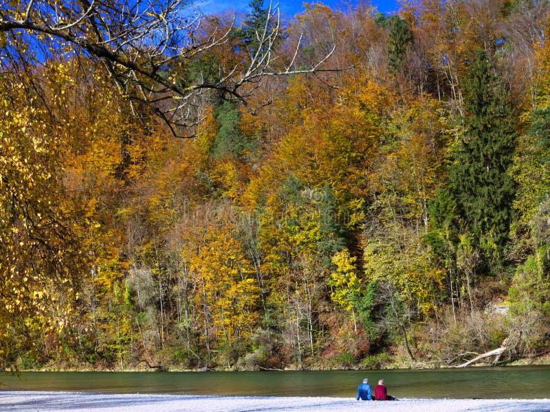 Φθινόπωρο στο πάρκο: κάθισμα κατά μήκος του ποταμού και απόλαυση ενός όμορφου τοπίου φυλλώματος στον ήλιο στοκ φωτογραφία με δικαίωμα ελεύθερης χρήσης