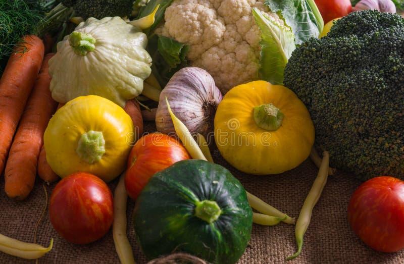 Φρέσκα λαχανικά, μικρή κολοκύνθη, καθώς επίσης και άλλα λαχανικά, κουνουπίδι, μπρόκολο, σκόρδο, ντομάτες που αυξάνονται σε ένα ec στοκ φωτογραφία με δικαίωμα ελεύθερης χρήσης