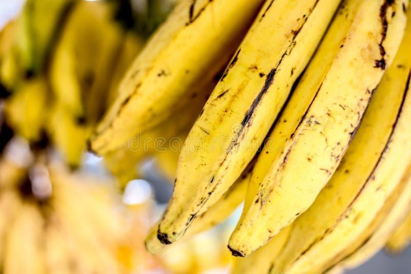 φρέσκες μπανάνες έτοιμες στοκ εικόνα