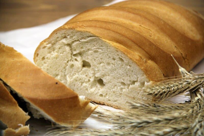φρέσκια φέτα ψωμιού στοκ φωτογραφίες με δικαίωμα ελεύθερης χρήσης