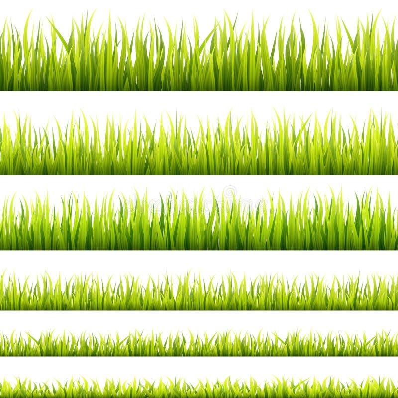 Φρέσκοι και πράσινοι νεαροί βλαστοί χλόης άνοιξη και βοτανικά άνευ ραφής εμβλήματα αύξησης Πανόραμα χορτοταπήτων άνοιξης σε ένα φ απεικόνιση αποθεμάτων