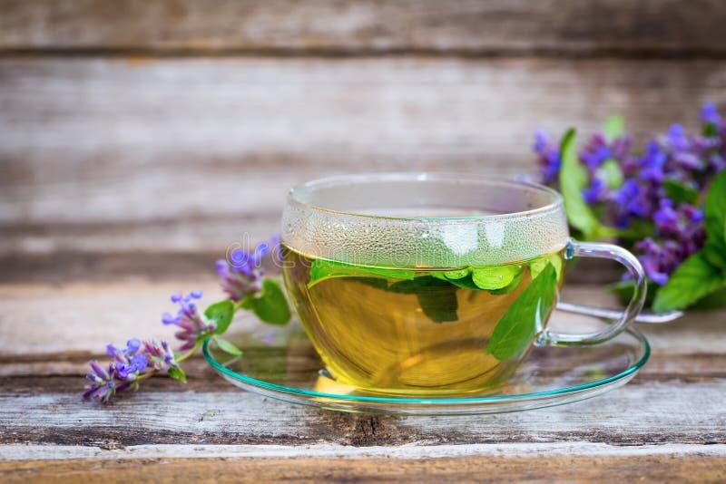 Φρέσκο τσάι catnip σε ένα φλυτζάνι γυαλιού στοκ φωτογραφίες