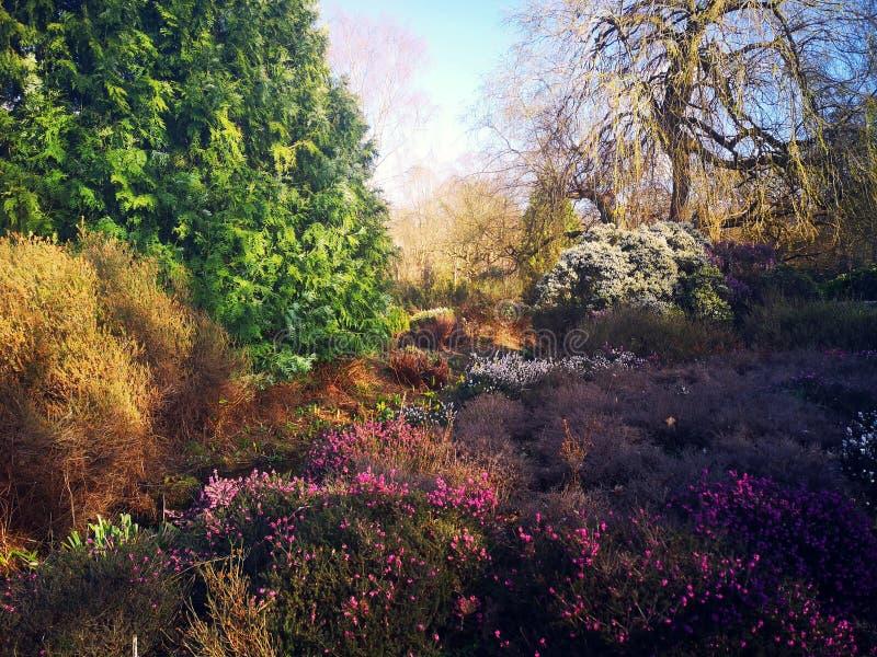 Φυτεία της Isabella στο Ρίτσμοντ, Λονδίνο στοκ φωτογραφίες με δικαίωμα ελεύθερης χρήσης