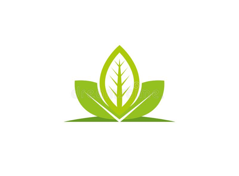 Φυτό φύλλων για την απεικόνιση σχεδίου λογότυπων, εικονίδιο φύσης διανυσματική απεικόνιση