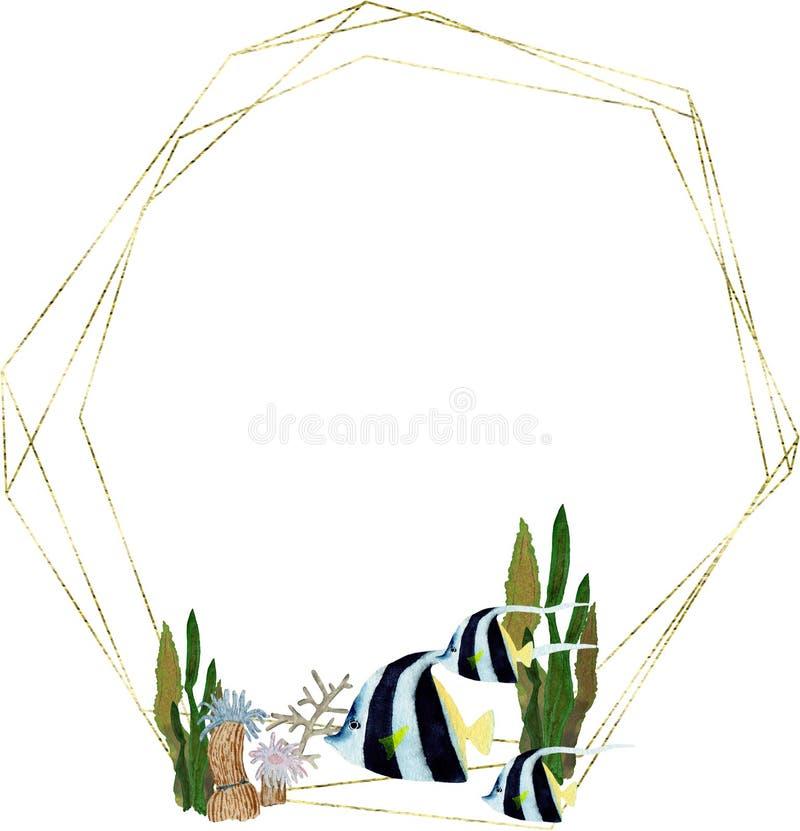 Χέρι που σύρεται στο παγκόσμιο φυσικό στοιχείο θάλασσας watercolor Πλαίσιο ψαριών κοραλλιογενών υφάλων στο άσπρο υπόβαθρο διανυσματική απεικόνιση