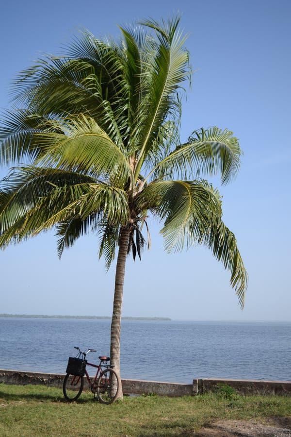 Χαλαρώστε στη λίμνη στην Κούβα στοκ εικόνες