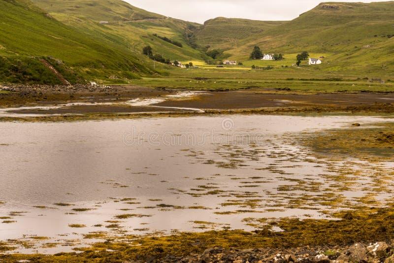 Χαρακτηριστικό, αγροτικό τοπίο στο σκωτσέζικο Χάιλαντς στοκ φωτογραφία με δικαίωμα ελεύθερης χρήσης