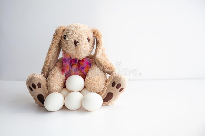 Χαριτωμένο παιχνίδι λαγουδάκι με τα αυγά κοτόπουλου που περιμένουν Πάσχα στο άσπρο υπόβαθρο στοκ εικόνα με δικαίωμα ελεύθερης χρήσης