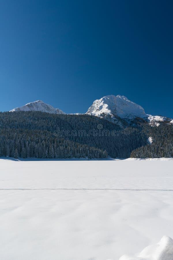 Χιονισμένα δέντρα έλατου mountainside κοντά στη μαύρη λίμνη στο εθνικό πάρκο Durmitor στοκ εικόνες