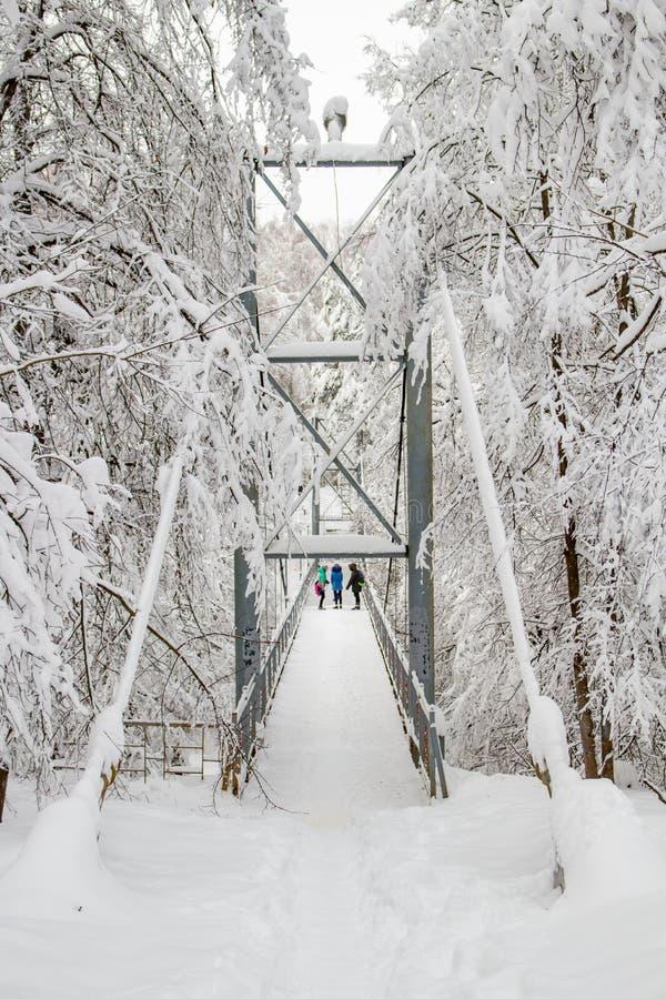 Χιονισμένη για τους πεζούς γέφυρα το χειμώνα στοκ εικόνες