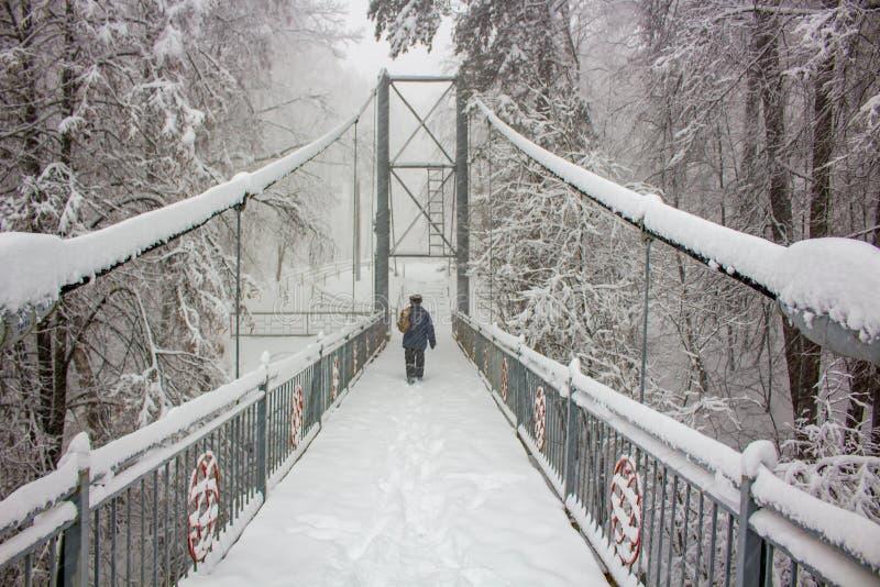 Χιονισμένη για τους πεζούς γέφυρα το χειμώνα στοκ εικόνα