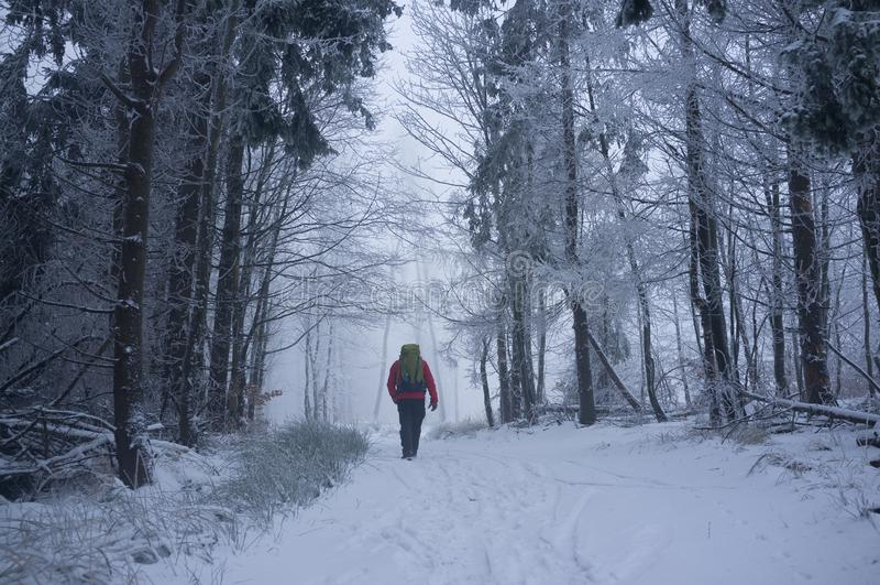 Χιονώδης δρόμος στα μικρά Καρπάθια βουνά το κρύο χειμερινό πρωί στοκ εικόνα
