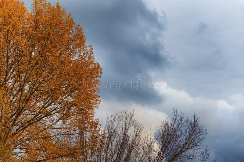 Χρώματα φθινοπώρου και θέτοντας φως ήλιων στα σύννεφα στοκ εικόνες