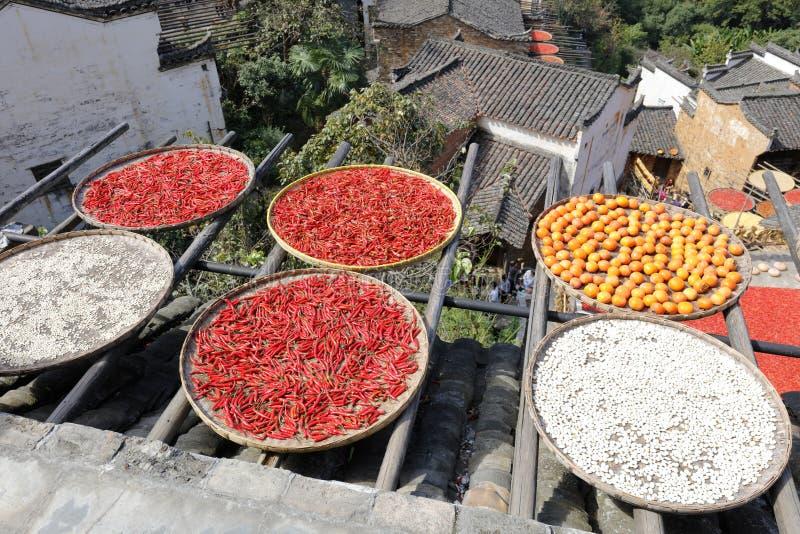 Χωρικοί που ξεραίνουν το αγροτικό προϊόν, πλίθα rgb στοκ εικόνες με δικαίωμα ελεύθερης χρήσης