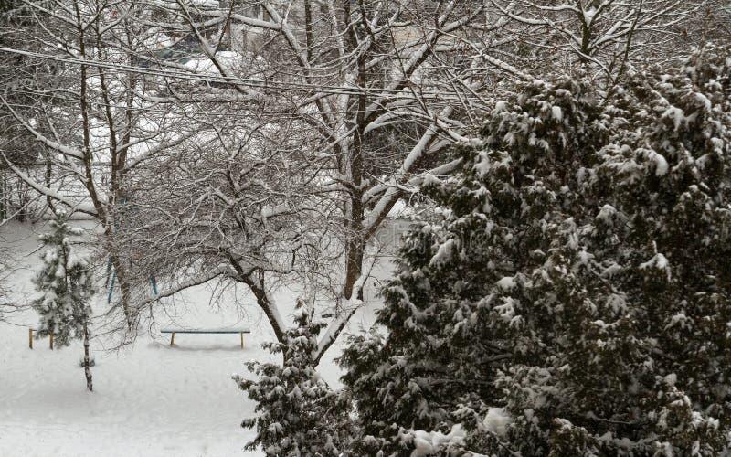 Πάγκος κάτω από το δέντρο στη χιονώδη ημέρα - χιόνι που καλύπτει τα δέντρα και τον πάγκο στοκ εικόνες