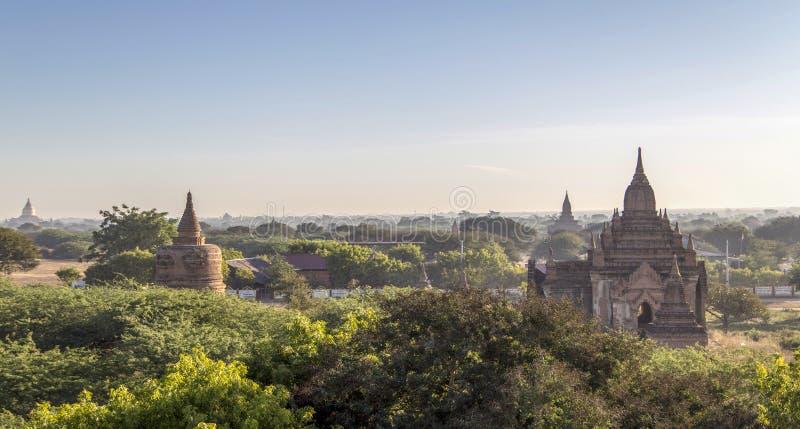 Παγόδες το πρωί, pugan, Myanmar στοκ εικόνα με δικαίωμα ελεύθερης χρήσης