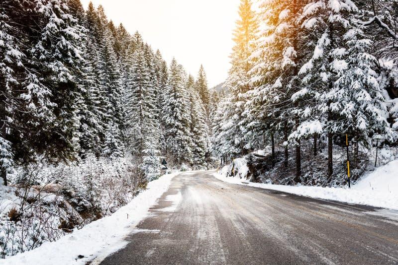 Παγωμένος δρόμος μέσω ενός χιονώδους δάσους στο LIT βουνών θερμά από έναν ήλιο ρύθμισης το χειμώνα στοκ εικόνα