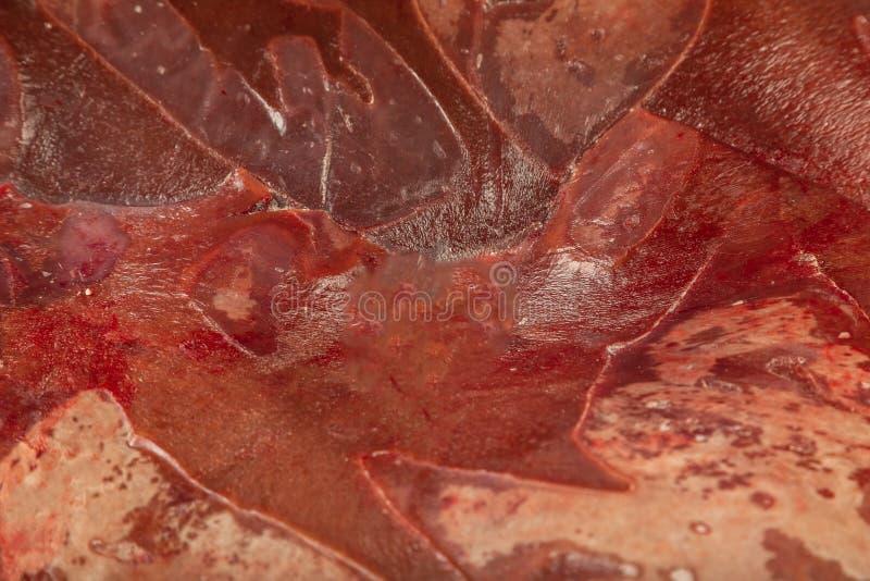 Παγωμένο φρέσκο συκώτι βόειου κρέατος στους φραγμούς, σύσταση του παγωμένου συκωτιού στοκ εικόνες