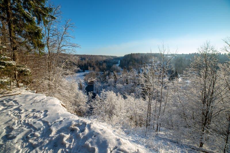 παγωμένο χειμερινό τοπίο τα δάση και τους τομείς που καλύπτονται με στο χιόνι στοκ εικόνα