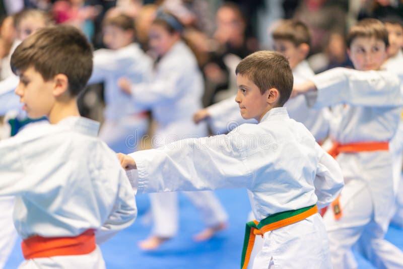 Παιδιά που εκπαιδεύουν Karate στοκ εικόνα
