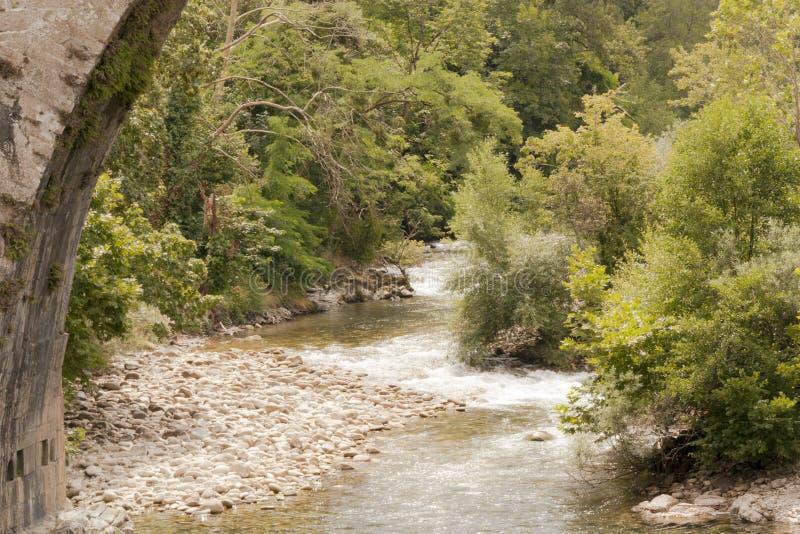 Πανοραμικό τοπίο της κοίτης ποταμού στη φύση που περιβάλλεται από τη βλάστηση στοκ εικόνα