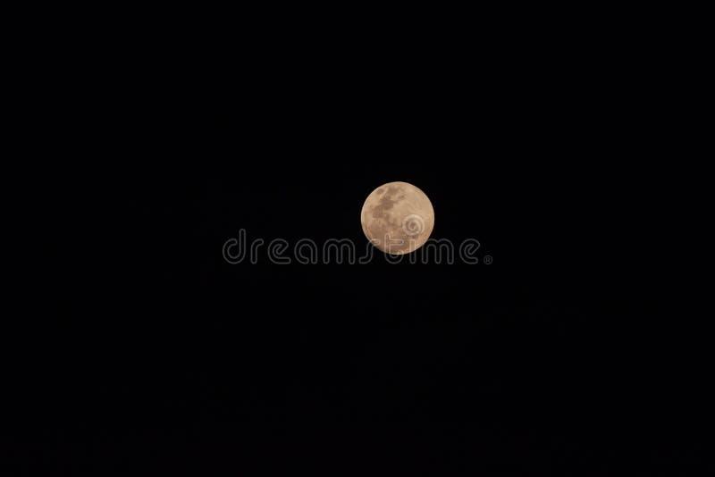 Πανσέληνος σε κίτρινο στη νύχτα στοκ φωτογραφία με δικαίωμα ελεύθερης χρήσης