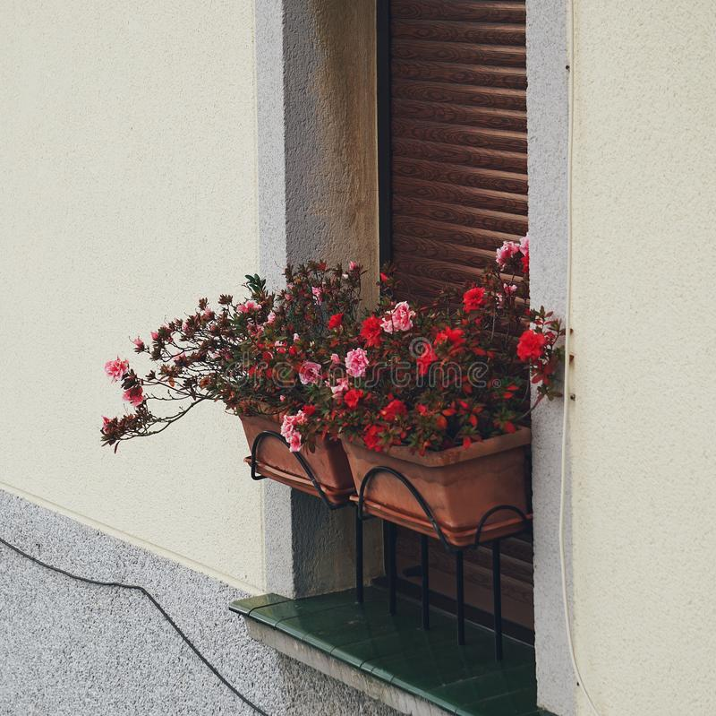 Παράθυρο στο σπίτι στοκ εικόνες