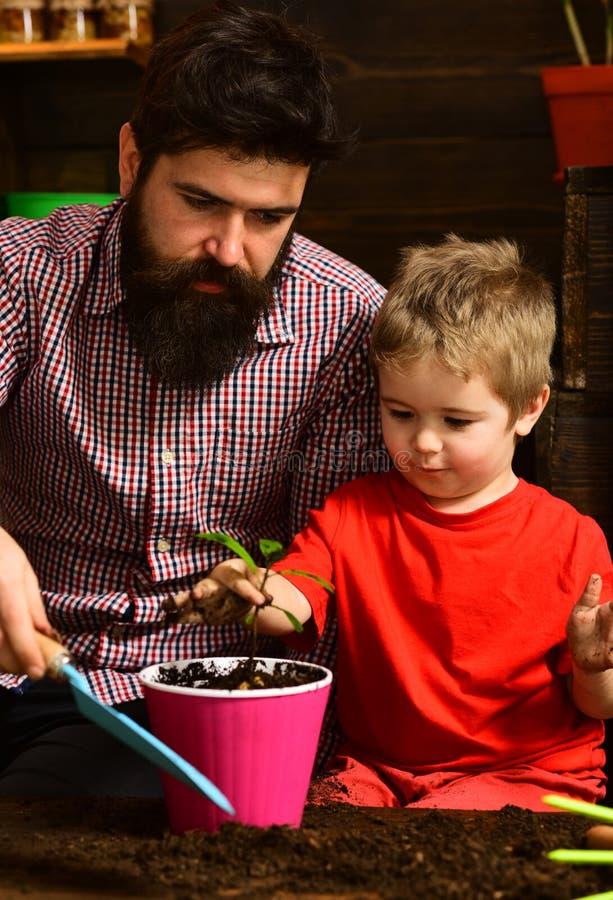 Πατέρας και γιος Ημέρα πατέρων Οικογενειακή ημέρα θερμοκήπιο Πότισμα προσοχής λουλουδιών Εδαφολογικά λιπάσματα ευτυχείς κηπουροί  στοκ εικόνες με δικαίωμα ελεύθερης χρήσης