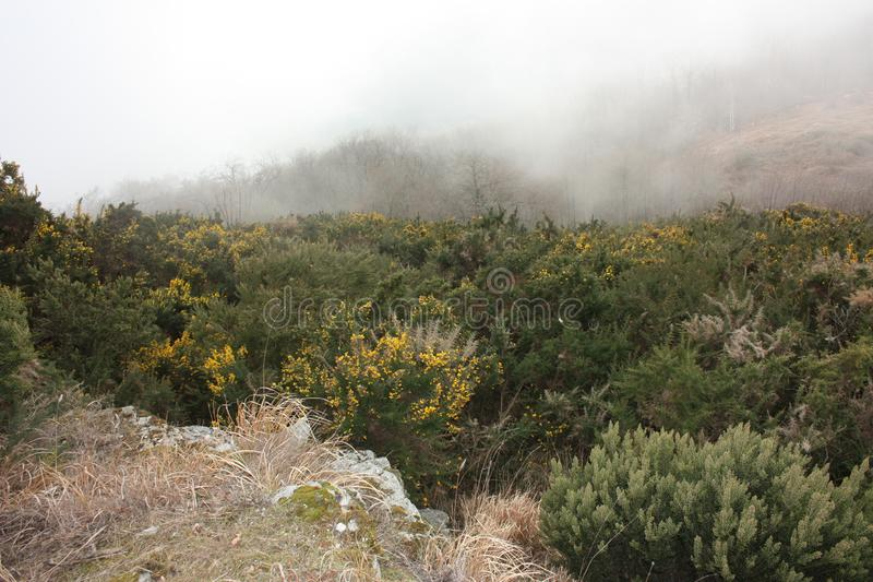 Παχιά και πυκνή ομίχλη μεταξύ των αιχμών των Άλπεων Apuan στην Τοσκάνη στοκ εικόνες με δικαίωμα ελεύθερης χρήσης