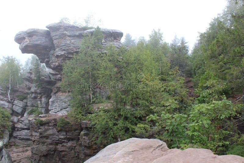 Περιοχή Perm χελωνών βουνών στοκ φωτογραφίες