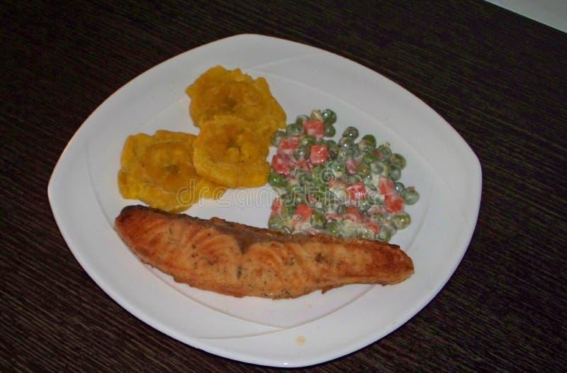 Πιάτο του σολομού που ψήνεται στη σχάρα στοκ εικόνα με δικαίωμα ελεύθερης χρήσης
