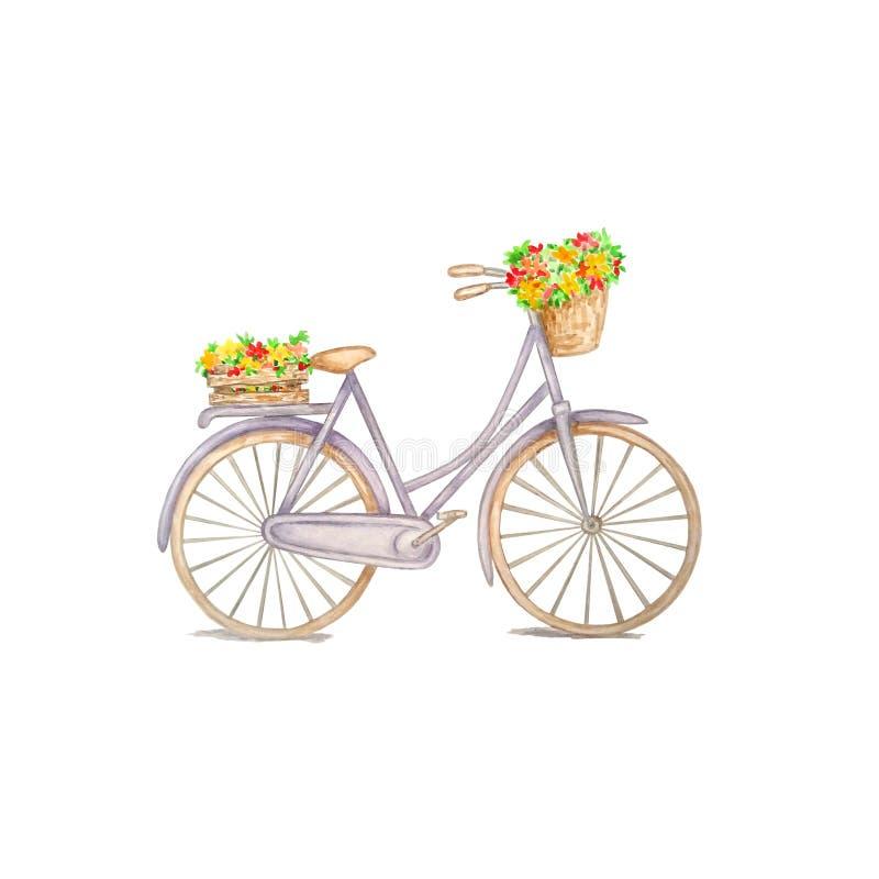 Ποδήλατο Watercolor με τα λουλούδια ελεύθερη απεικόνιση δικαιώματος