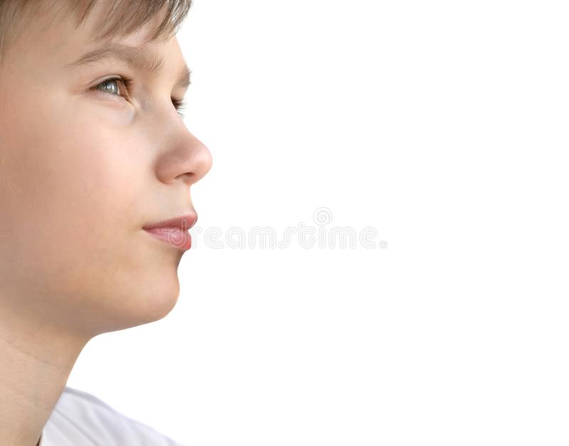 Πορτρέτο σχεδιαγράμματος εφήβων που απομονώνεται στο λευκό στοκ εικόνες με δικαίωμα ελεύθερης χρήσης